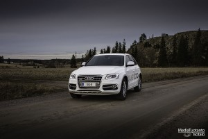 Audi_SQ5_3_small